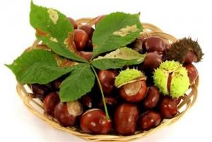 男性吃什么食物补肾壮阳效果好图,肾功能,滋阴补肾,肾虚遗精