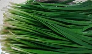 吃韭菜可以补肾壮阳