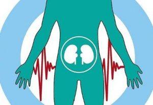 肾虚阳痿的症状有哪些?