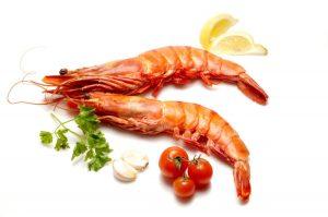 男性阳痿早泄吃什么好,性功能障碍,壮阳益肾,补肾益精