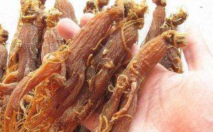 红参食用的功效,红参怎么吃壮阳,红参的壮阳补肾食疗方