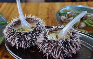 海胆壮阳,海胆的药用价值,烹饪海胆的注意事项