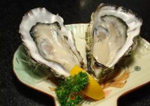 补肾壮阳牡蛎图