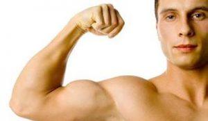 男人在日常生活中吃什么东西能壮阳补肾?