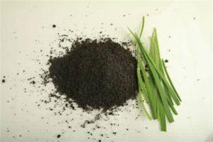 韭菜籽怎么吃最壮阳,韭菜籽的功效及作用,补肾温阳