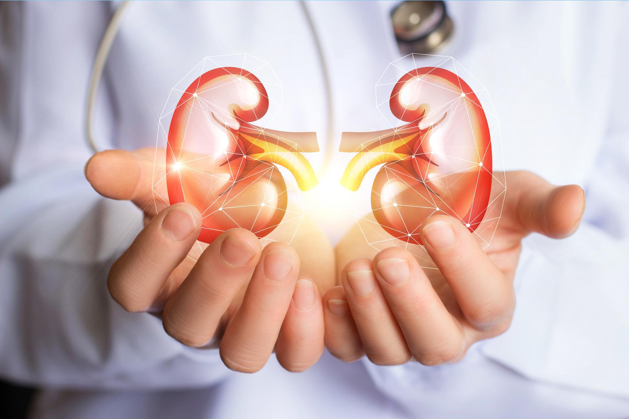 男人补肾吃什么?真正能补肾的食物有哪些?