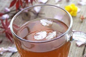 喝什么补肾好?男女都需要的六款补肾养生茶