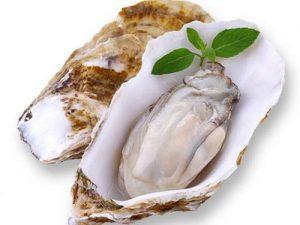 壮阳什么最好?牡蛎壮阳的三大功效