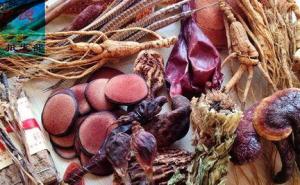 吃什么东西可以补肾?中医补肾的学问其实很讲究