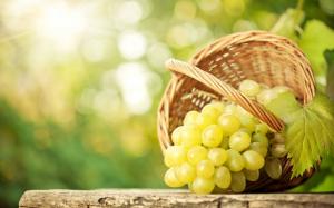 吃水果还能补肾吗?补肾壮阳吃什么水果好?