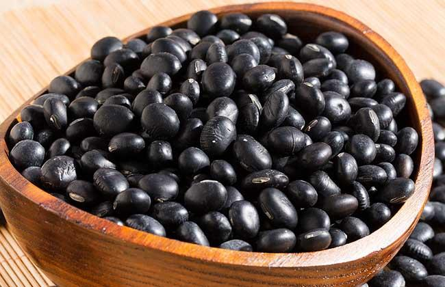 黑豆补肾吗?补肾阴虚还是肾阳虚呢?