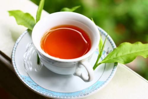 喝茶能补肾吗?推荐几款补肾效果好的茶
