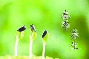春季应该怎么补肾?补肾应注意什么